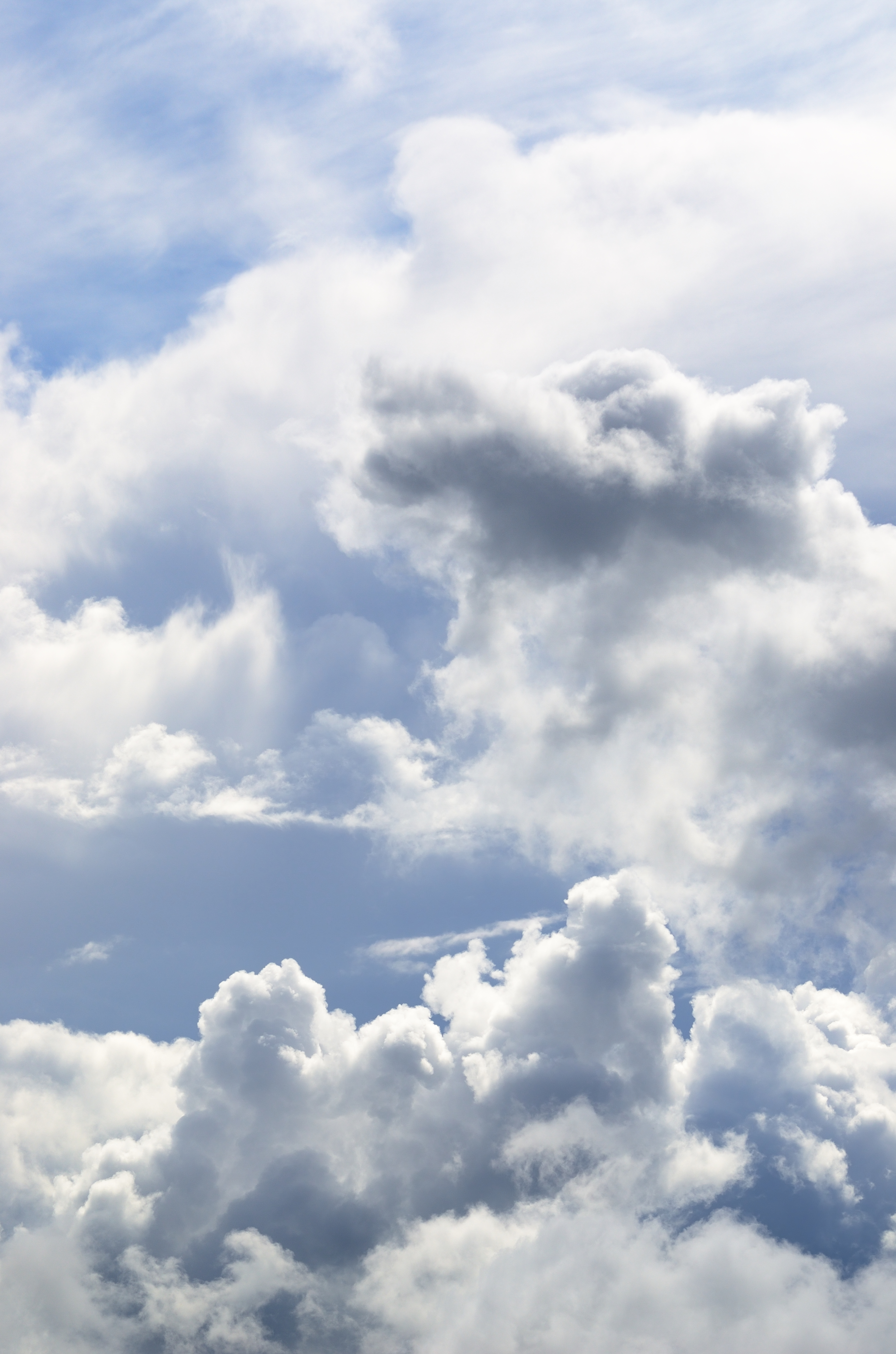 Maitre et disciple, une place au ciel